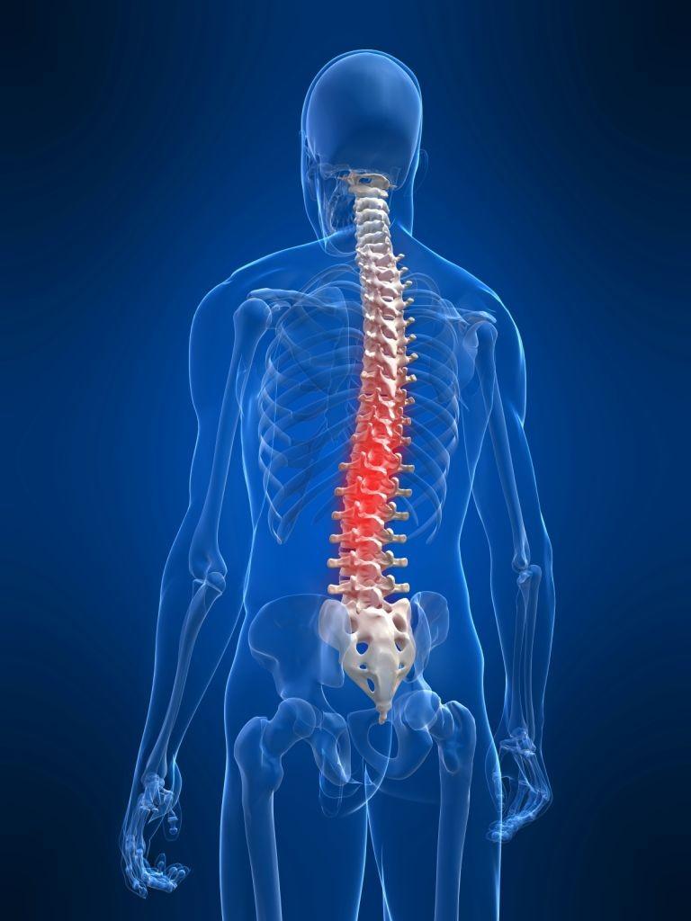 Връзката  гръбнак – енергийна психология