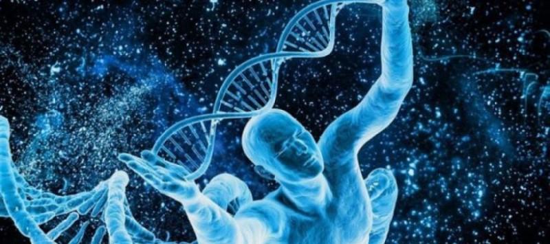 ДНК може да бъде изменена
