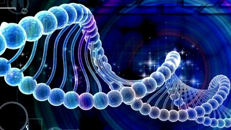 Спомените може да се предават от поколение на поколение в гените ни!